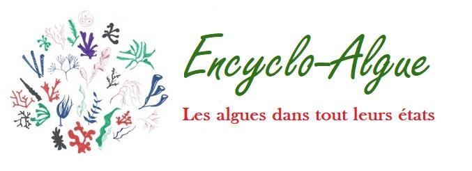 Encyclo-Algue